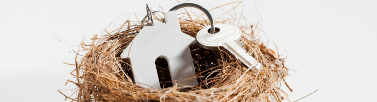 House key and key fob in a bird's nest