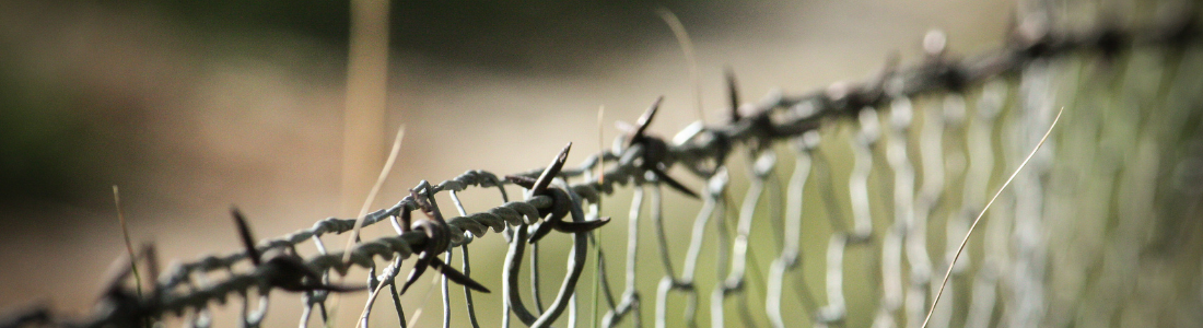 Close up of fence topped with barbed wire